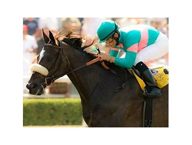 "Zenyatta is scheduled to make her long-awaited 2009 debut in the Milady.<br><a target=""blank"" href=""http://www.bloodhorse.com/horse-racing/photo-store?ref=http%3A%2F%2Fpictopia.com%2Fperl%2Fgal%3Fprovider_id%3D368%26ptp_photo_id%3D6136162%26ref%3Dstory"">Order This Photo</a>"