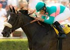 Zenyatta Makes Belated Seasonal Bow in Milady