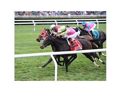 "Effie Trinket travels from New York to contest the Mrs. Revere Stakes.<br><a target=""blank"" href=""http://photos.bloodhorse.com/AtTheRaces-1/at-the-races-2013/27257665_QgCqdh#!i=2844778836&k=3DssjQT"">Order This Photo</a>"
