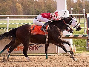 Outbacker wins the 2014 Maryland Million Starter.