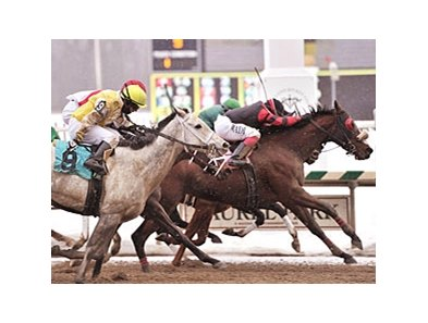 William R. Harris bred and owned 2010 Barbara Fritchie Handicap winner Sweet Goodbye.