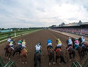 Travers Attendance, Handle Post Increases