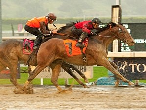 Juniper Pass in the 2011 San Luis Rey Stakes.