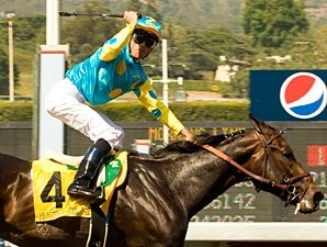 Pioneerof The Nile to Vinery