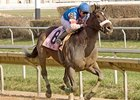 Musket Man Wins Illinois Derby