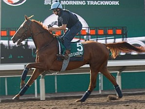 Red Cadeaux - Hong Kong, December 7, 2011