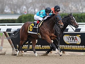 Miss Narcissist wins the 2013 New York Stallion Series.