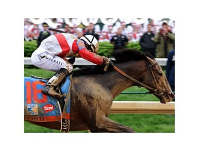 "Orb won the 2013 Kentucky Derby. <br><a target=""blank"" href=""http://photos.bloodhorse.com/TripleCrown/2013-Triple-Crown/Kentucky-Derby-139/29213460_Rcqkd4#!i=2493303351&k=9QJt3F5"">Order This Photo</a>"