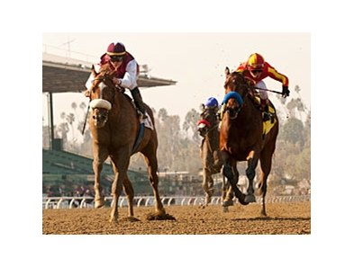 Out of Bounds pulls away late in the Sham at Santa Anita.