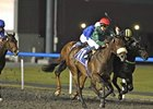 Splash Point outfinishes Zanzamar to win UAE 2000 Guineas.