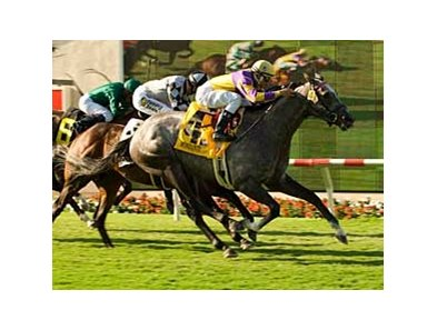 "Eddie Read winner Monzante<br><a target=""blank"" href=""http://www.bloodhorse.com/horse-racing/photo-store?ref=http%3A%2F%2Fpictopia.com%2Fperl%2Fgal%3Fprovider_id%3D368%26ptp_photo_id%3D5213279%26ref%3Dstory"">Order This Photo</a>"