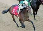 Lantana Mob won the Bachelor Stakes at Oaklawn Park.