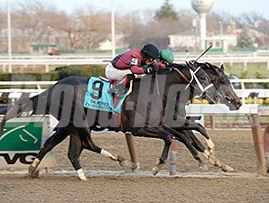 Honor Code wins the 2013 Remsen over Cairo Prince.