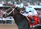 Verrazano Favored in Deep Travers Field