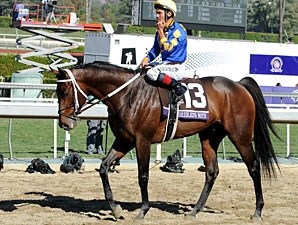 Unbridled's Note - Breeders' Cup 2012.