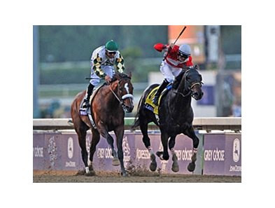 "Fort Larned (right) holds off Mucho Macho Man to win the Breeders' Cup Classic.<br><a target=""blank"" href=""http://photos.bloodhorse.com/BreedersCup/2012-Breeders-Cup/Classic/26128658_j8xsjs#!i=2193240130&k=kC2vZxZ"">Order This Photo</a>"