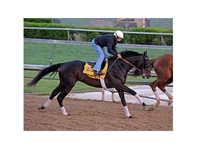 Court Vision gets in a five furlong work at Churchill Downs April 27.