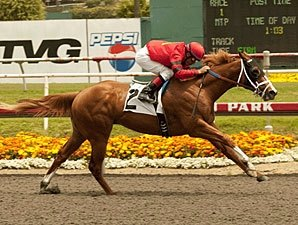 Majestic City Posts Bullet Work for Futurity