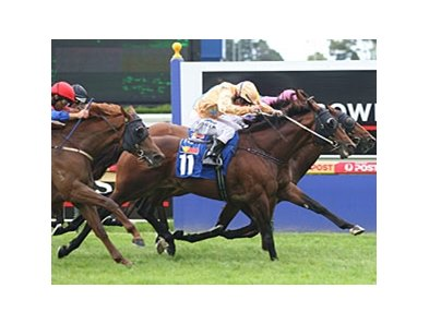 Shinzig (outside) powers to victory in the Orr Stakes.