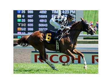 Spice Route emerged from the pack and scored an easy win in the Singspiel Stakes on Queen's Plate day at Woodbine.