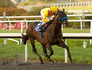 Richard's Kid wins the 2012 Prove It Stakes.