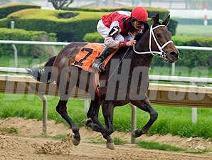 Wild Hope wins the 2010 Pretty Jenny Stakes.