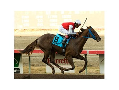 Seattle Ruler pulls away in the Barretts Juvenile Stakes.