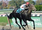"Willet won the restricted Iroquois Stakes by 9 1/4 lengths.<br><a target=""blank"" href=""http://photos.bloodhorse.com/AtTheRaces-1/at-the-races-2012/22274956_jFd5jM#!i=2227523165&k=czf2ft8"">Order This Photo</a>"