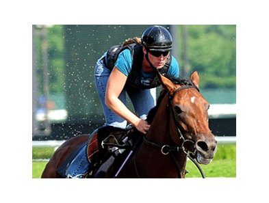 "Big Brown<br><a target=""blank"" href=""http://www.bloodhorse.com/horse-racing/photo-store?ref=http%3A%2F%2Fpictopia.com%2Fperl%2Fgal%3Fprovider_id%3D368%26ptp_photo_id%3D4719416%26ref%3Dstory"">Order This Photo</a>"