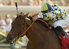 "Salute the Sarge is under consideration for the Kentucky Derby (gr. I).<br><a target=""blank"" href=""http://www.bloodhorse.com/horse-racing/photo-store?ref=http%3A%2F%2Fpictopia.com%2Fperl%2Fgal%3Fprovider_id%3D368%26ptp_photo_id%3D2063949%26ref%3Dstory"">Order This Photo</a>"