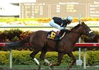 "Richter Scale winner Commentator heads the Met Mile.<br><a target=""blank"" href=""http://www.bloodhorse.com/horse-racing/photo-store?ref=http%3A%2F%2Fpictopia.com%2Fperl%2Fgal%3Fprovider_id%3D368%26ptp_photo_id%3D3788789%26ref%3Dstory"">Order This Photo</a>"