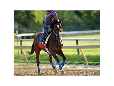 Went the Day Well