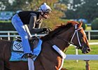 Golden Soul in Allowance at Kentucky Downs