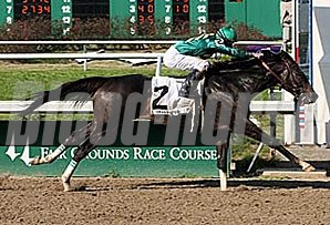 Grasshopper powers to victory in the Mineshaft.