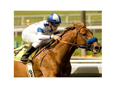 "Sidney's Candy and Joe Talamo looked great in the Santa Anita Derby.<br><a target=""blank"" href=""http://www.bloodhorse.com/horse-racing/photo-store?ref=http%3A%2F%2Fpictopia.com%2Fperl%2Fgal%3Fprovider_id%3D368%26ptp_photo_id%3D8874560%26ref%3Dstory"">Order This Photo</a>"