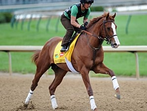 Shackleford - Churchill Downs April 26, 2010.