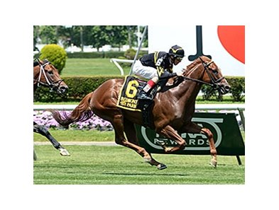 "Undrafted<br><a target=""blank"" href=""http://photos.bloodhorse.com/AtTheRaces-1/At-the-Races-2014/i-rxG4Sqg"">Order This Photo</a>"
