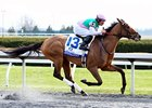 Emollient  won the 2013 Ashland Stakes.