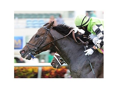 Lochte
