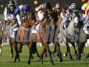 Ortensia in the Al Quoz Sprint.