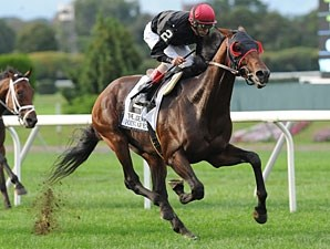 Point of Entry wins the 2012 Joe Hirsch.