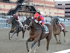 Royal Lahaina wins the 2013 Go for Wand Handicap.
