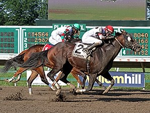Cherokee Artist wins the 2014 Mr. Prospector Stakes.
