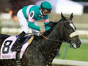 Zenyatta in the 2010 Breeders' Cup Classic.