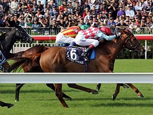 Red Cadeaux Captures Tight Hong Kong Vase