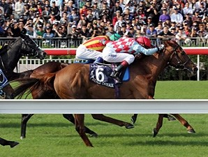 Red Cadeaux wins the Hong Kong Vase.