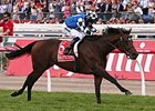 Protectionist Flies to Melbourne Cup Win