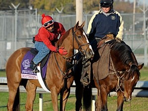 Dayatthespa at Churchill Downs, November 1, 2011.