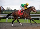 "Aikenite rolls late to win the Commonwealth.<br><a target=""blank"" href=""http://www.bloodhorse.com/horse-racing/photo-store?ref=http%3A%2F%2Fpictopia.com%2Fperl%2Fgal%3Fprovider_id%3D368%26ptp_photo_id%3D9493570%26ref%3Dstory"">Order This Photo</a>"