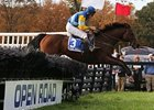 "Pierrot Lunaire won back-to-back National Steeplechase Association grade I races.<br><a target=""blank"" href=""http://photos.bloodhorse.com/AtTheRaces-1/at-the-races-2012/22274956_jFd5jM#!i=2162763533&k=Mpd2RFR"">Order This Photo</a>"
